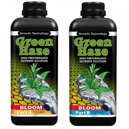 Green Haze Bloom A&B