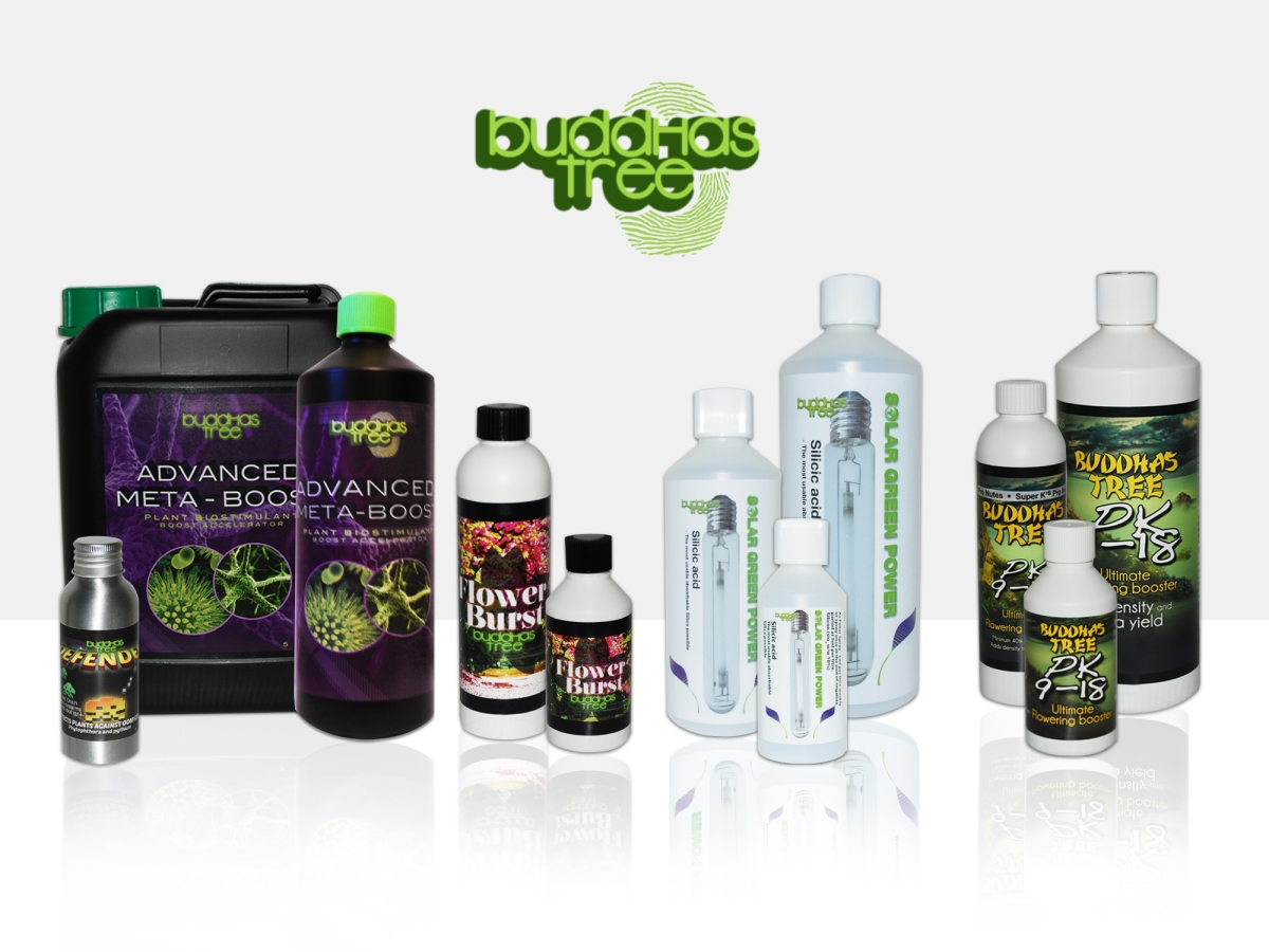 Buddhas Tree Additives