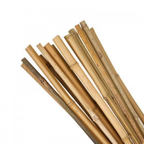 Bamboo Canes 25pk