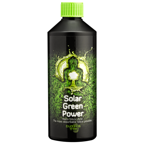 Buddhas Tree Solar Green Power 500ml