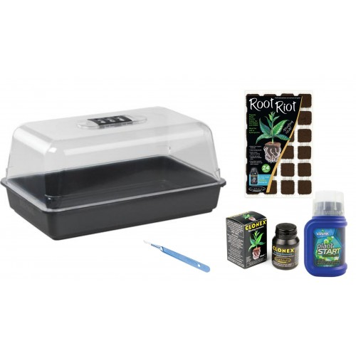 Small Cuttings And Seeds Propagation Kit